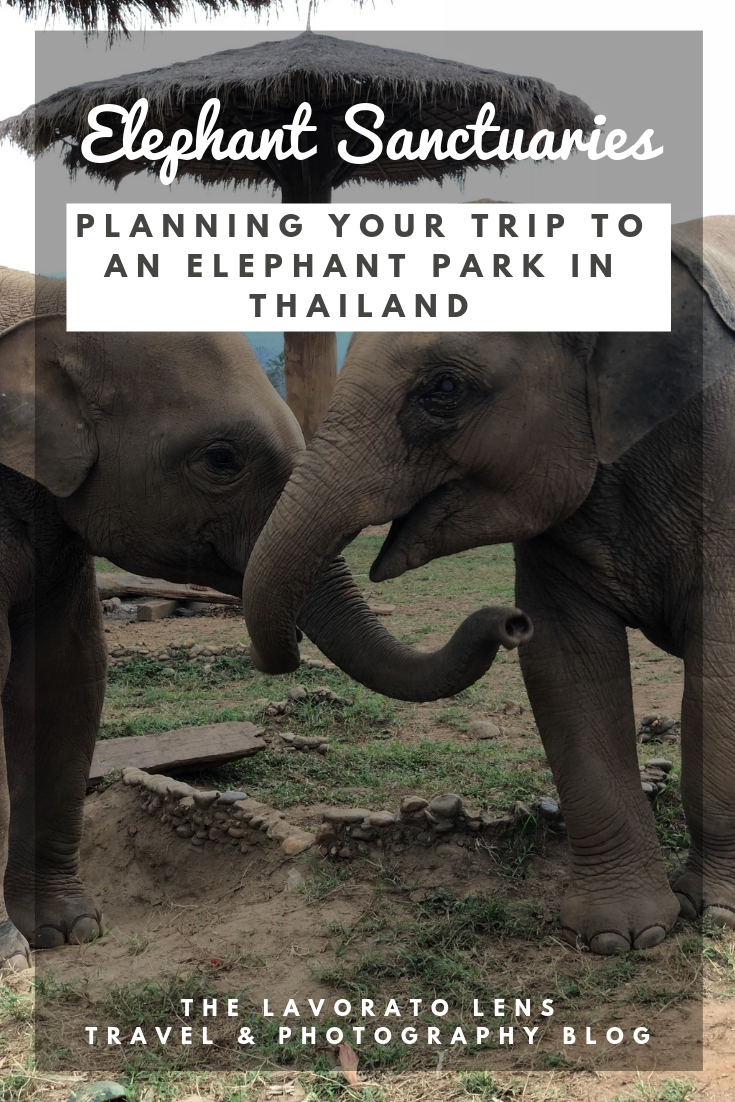 Planning your Trip to an Elephant Sanctuary in Thailand | The Lavorato Lens