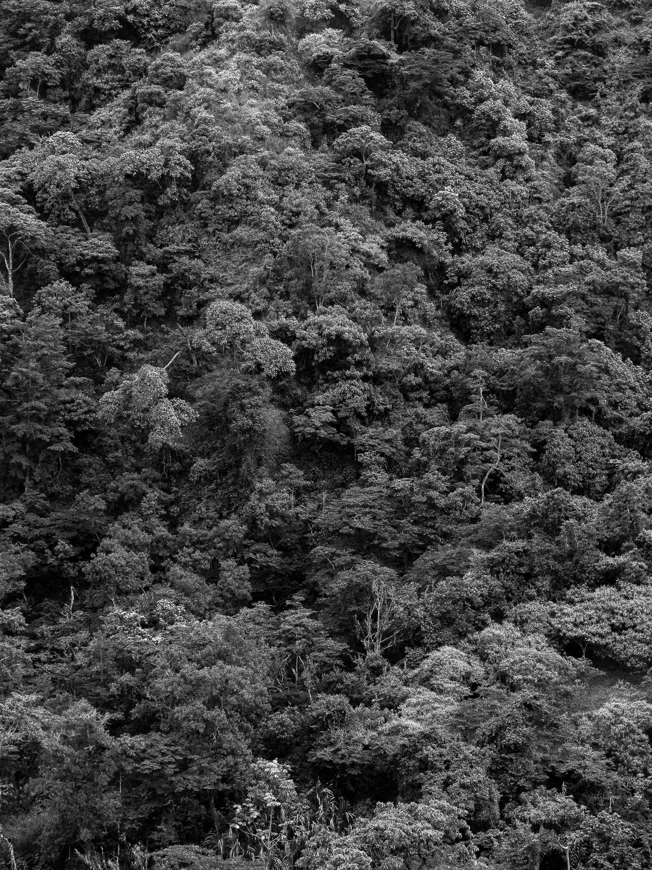aliselvi-tierra de lucha-1.jpg