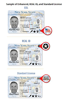 Credit: NYS Dept. of Motor Vehicles