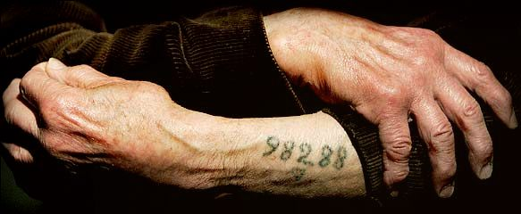 The Blue Card Tattoo.jpg