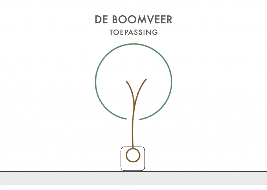 Boomveer ón the roof