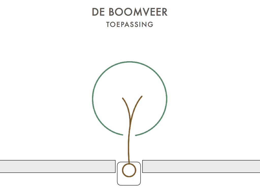 Boomveer through the roof
