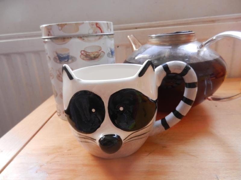 Tell me this Racoon mug isn't perfect, I dare you…