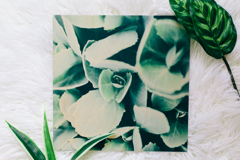 Flower wood prints Dagny Kream Photography-11.jpg