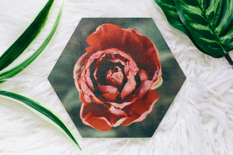 Flower wood prints Dagny Kream Photography-8.jpg
