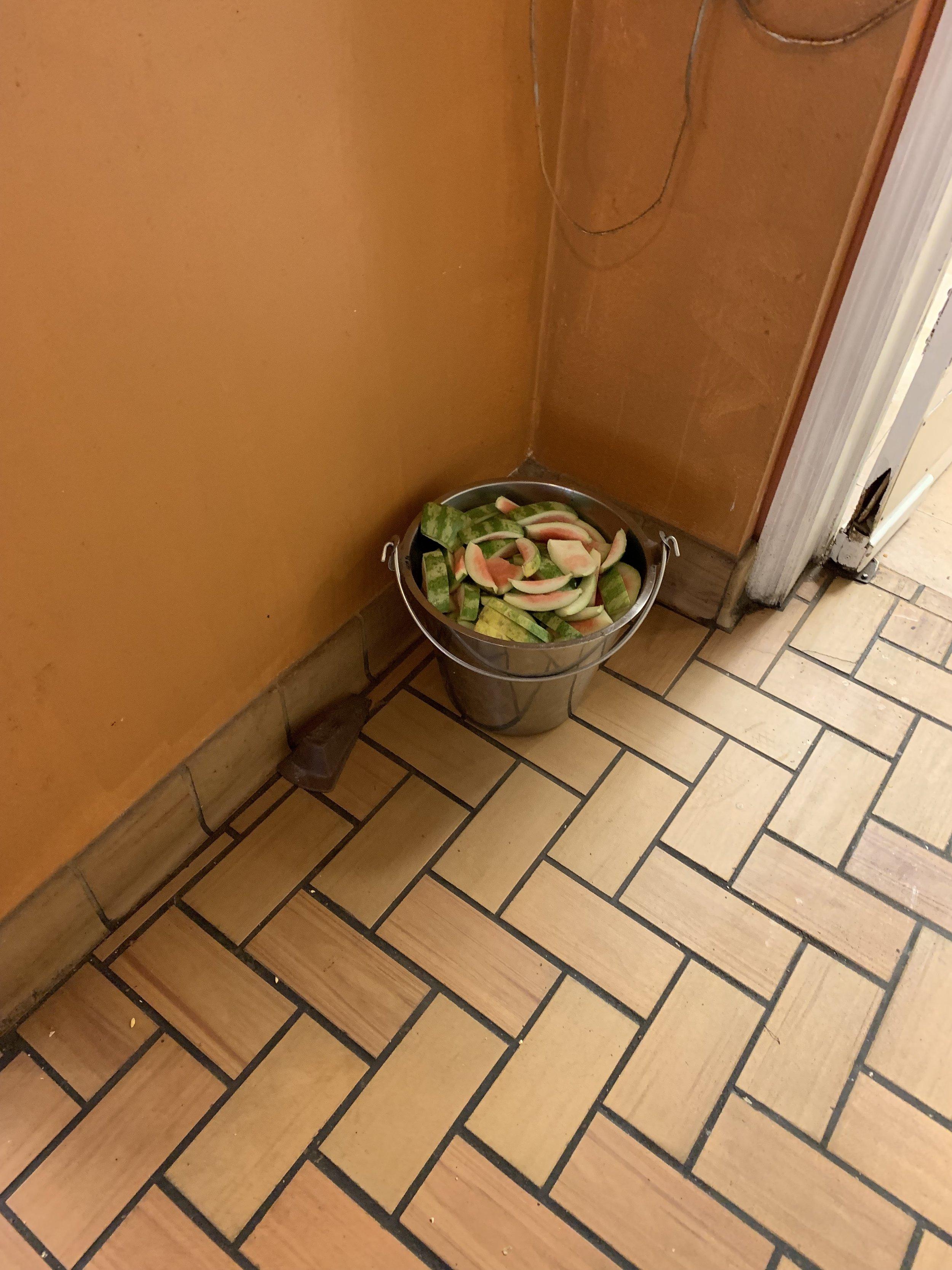Compost Bucket.jpg