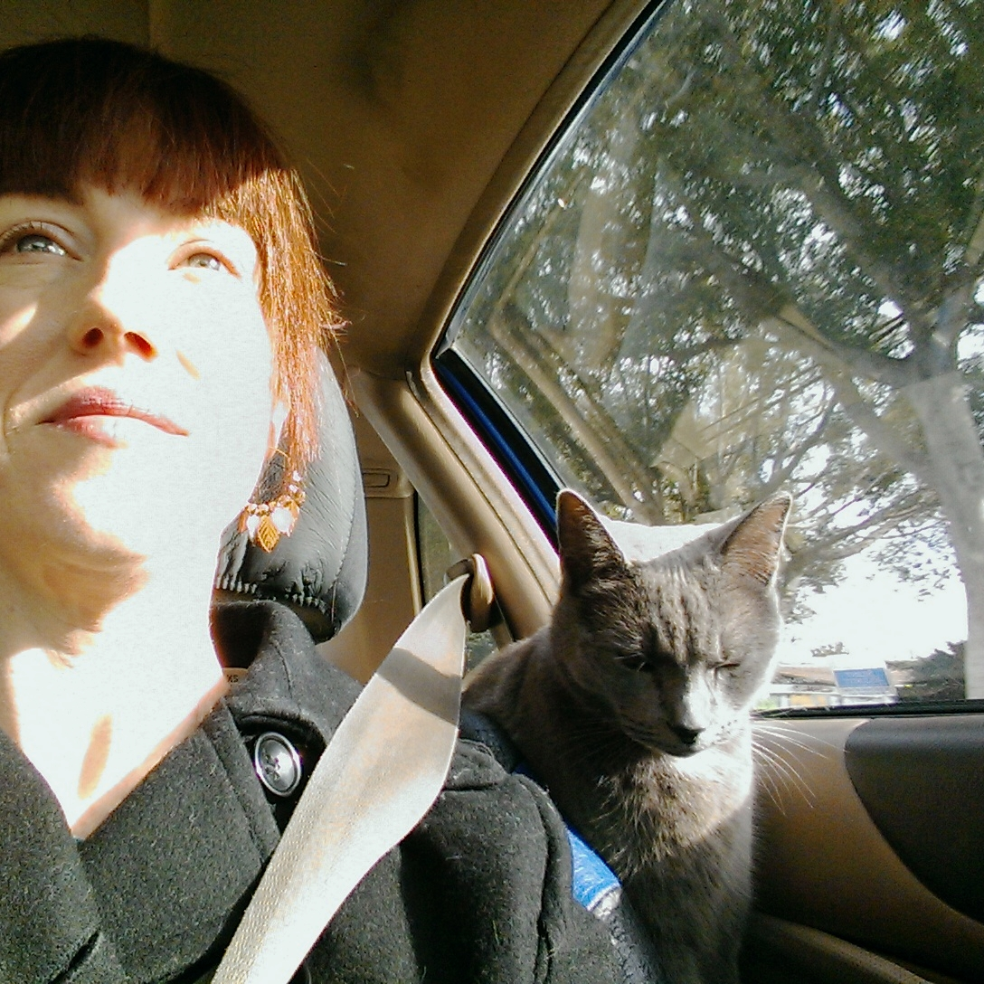 That's friend. My Russian Blue love who needed morning car rides back in my 9-5 days.
