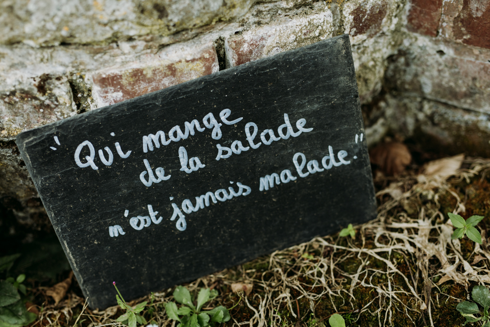Miromesnil_eva-nemeth_jardin07.jpg
