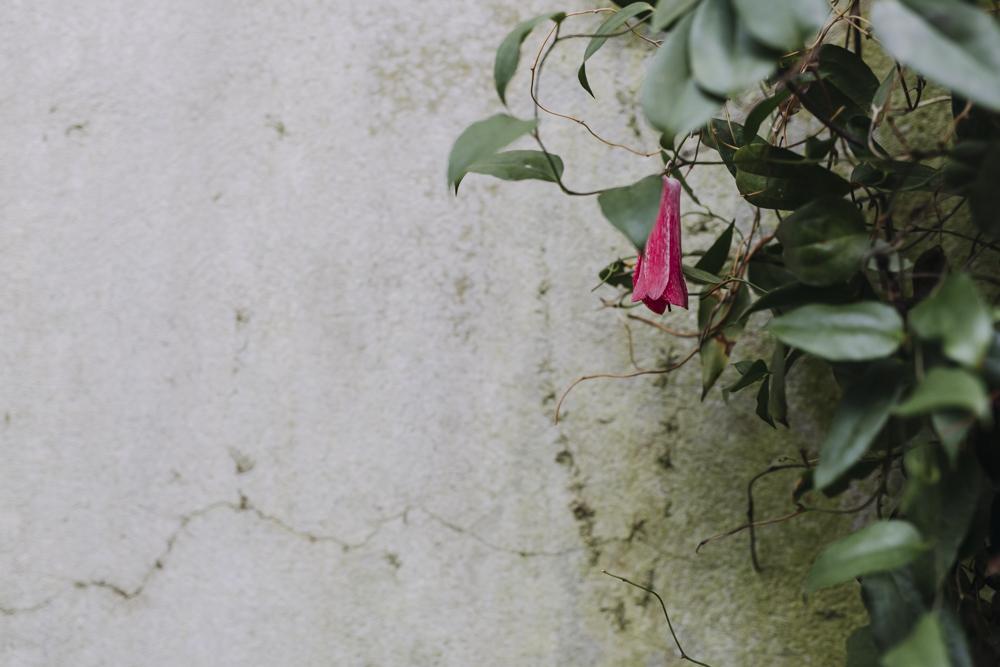 Chatsworth-gardens-eva-nemeth_19.jpg