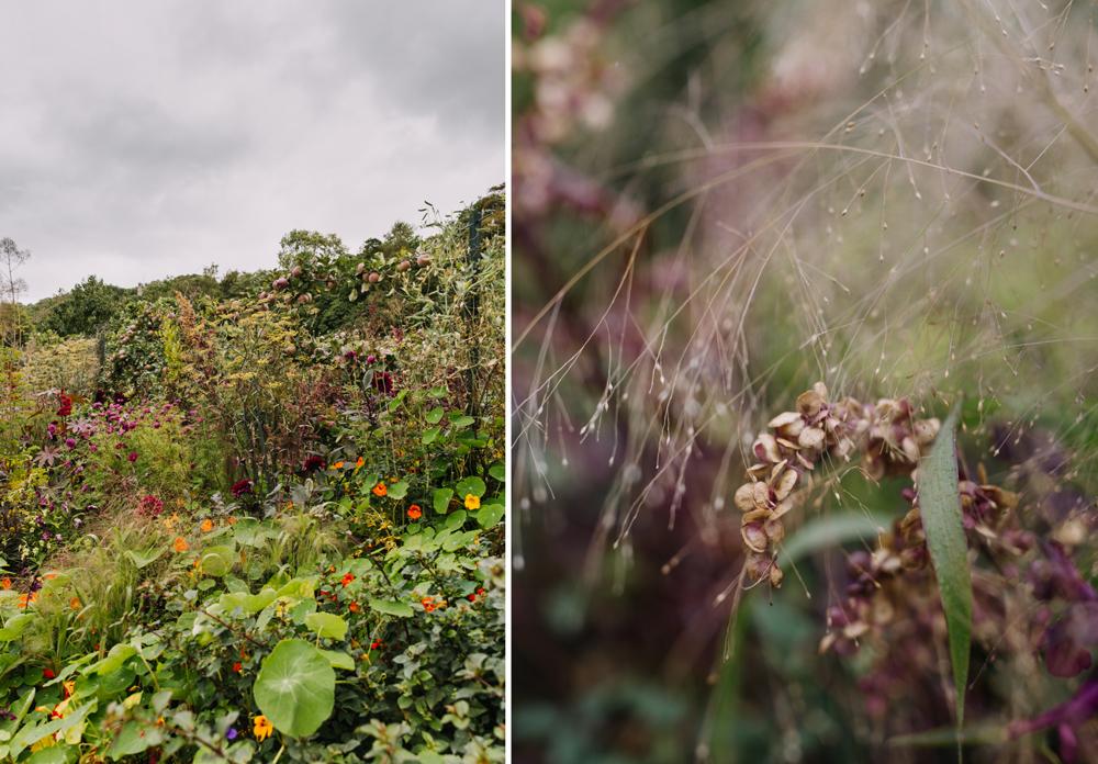 Chatsworth-gardens-eva-nemeth_03.jpg