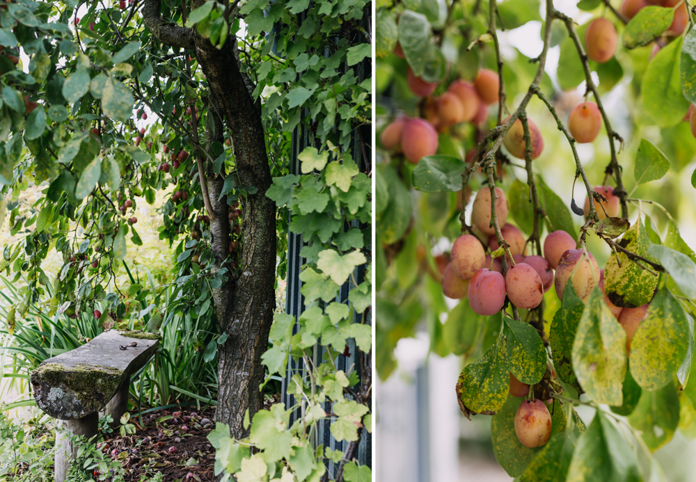Chatsworth-gardens-eva-nemeth_08.jpg