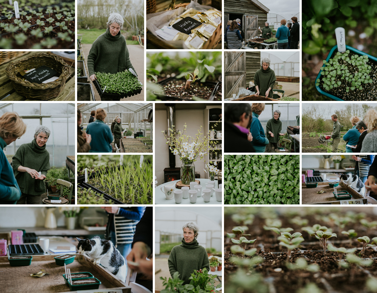 Propagation Masterclass at Green and  Gorgeous Flower Farm