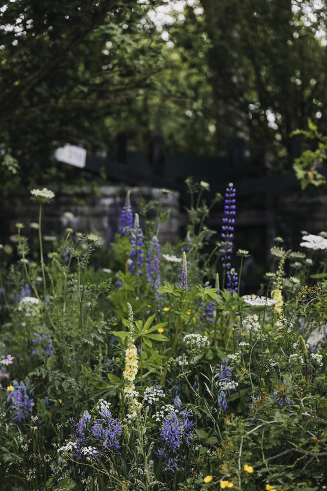 welcome-to-yorkshire-chelsea-garden03.jpg