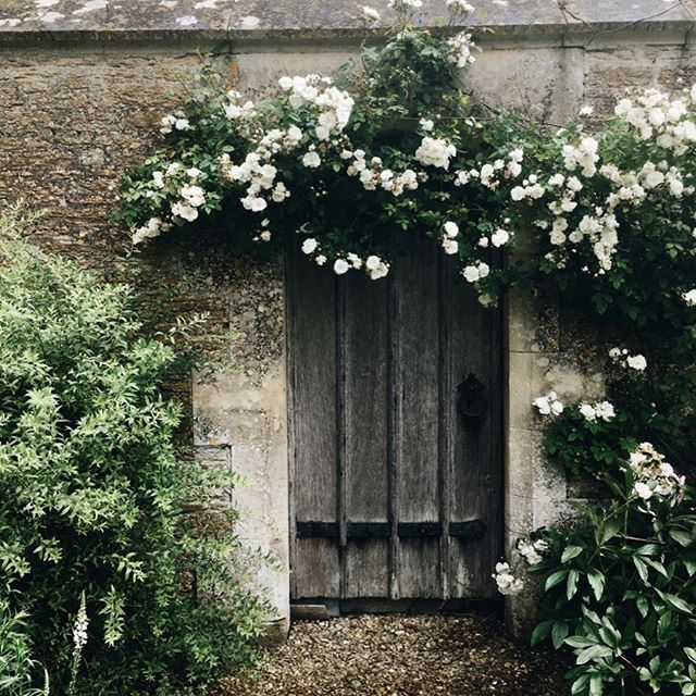 Another little gem of the National Trust, Great Chalfield Manor. I stopped here on the way home from Somerset. I absolutely loved it, despite the pouring rain.