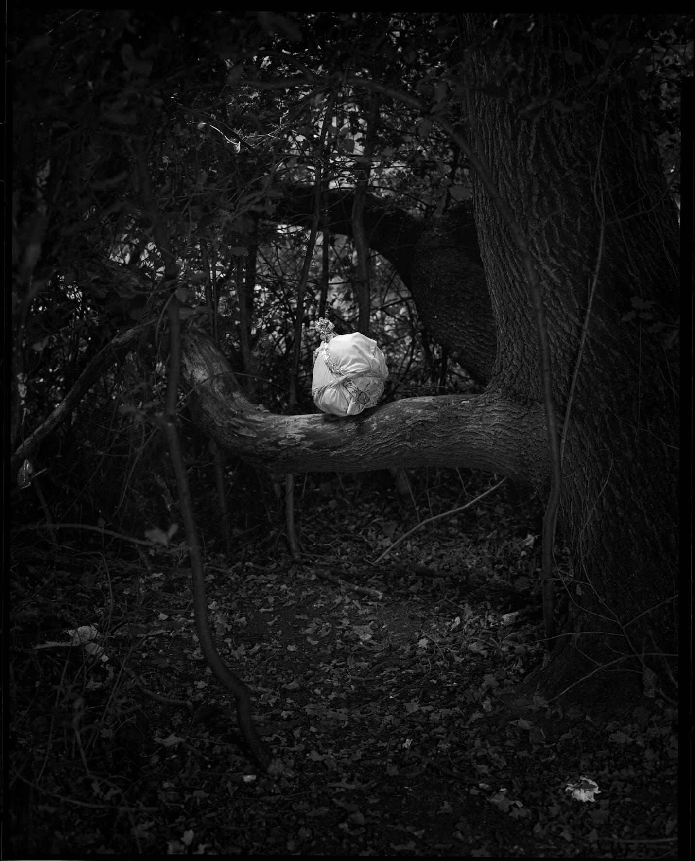 Rituals by Danny Treacy