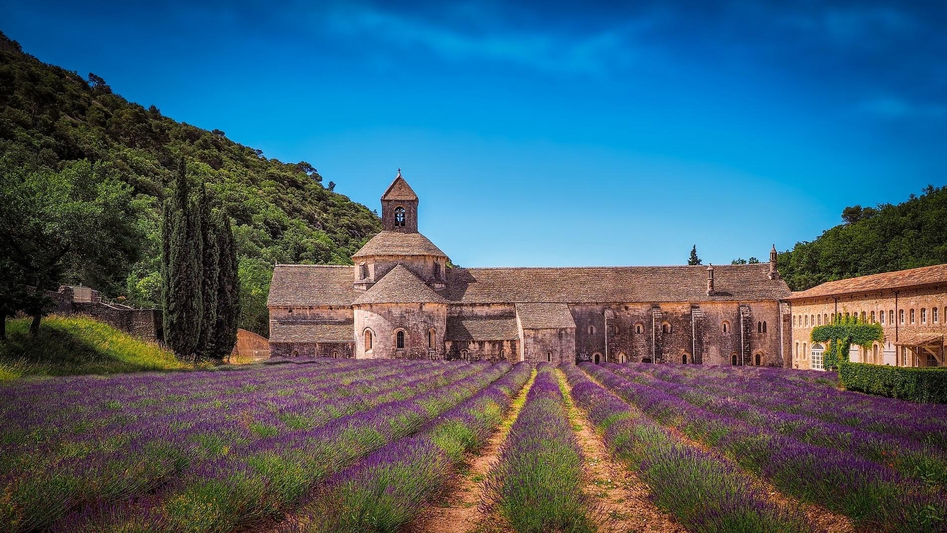 Lavender fields of Abbaye Notre-Dame de Senanque - Avignon/Gordes, France