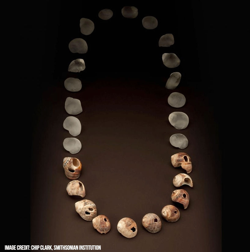 Oldest known piece of jewelry - Smithsonian Institution