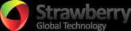 sgt-logo.png