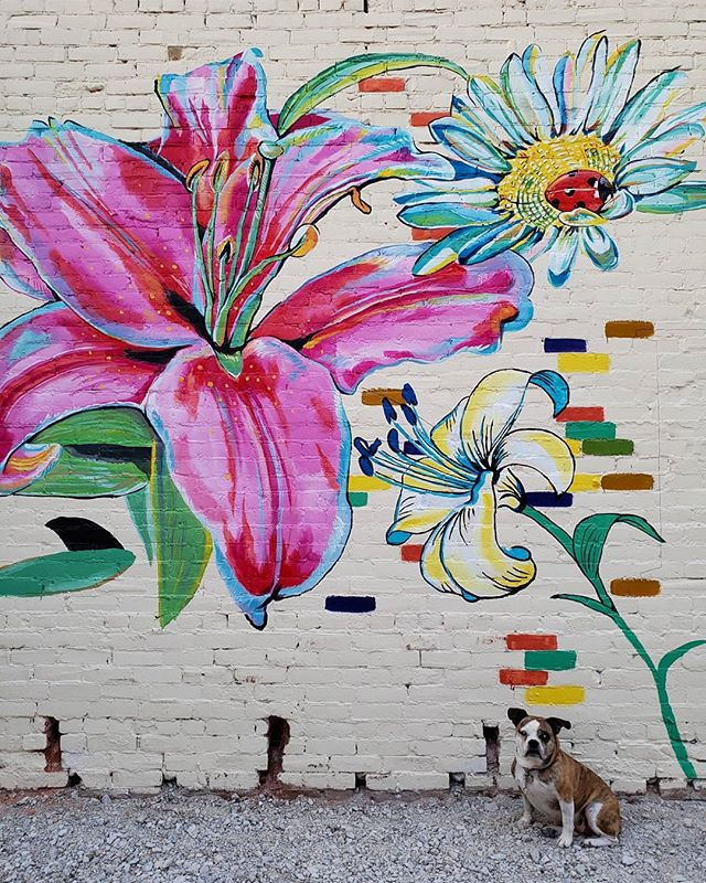 More #elwoodindiana mural progress today! Miss potato is modeling for scale 👌