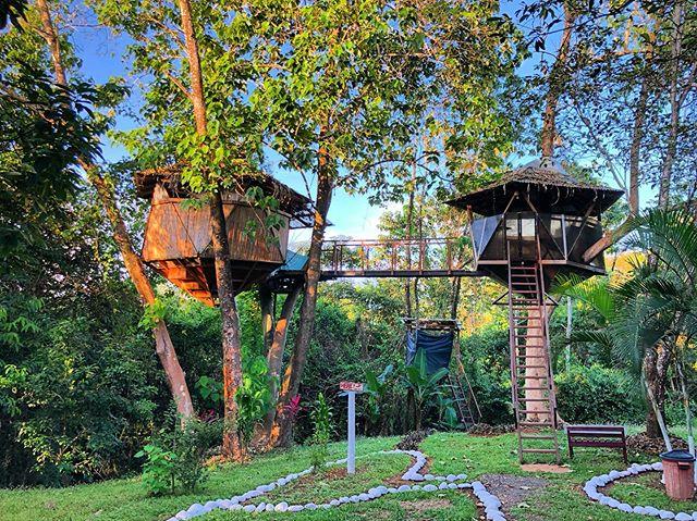Our tree house in Costa Rica! #costarica #montezuma #travel