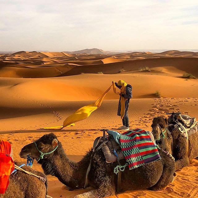 Saharan uber #soreass #thesahara #saharadesert #sahara #moroccotravel #morocco #merzouga