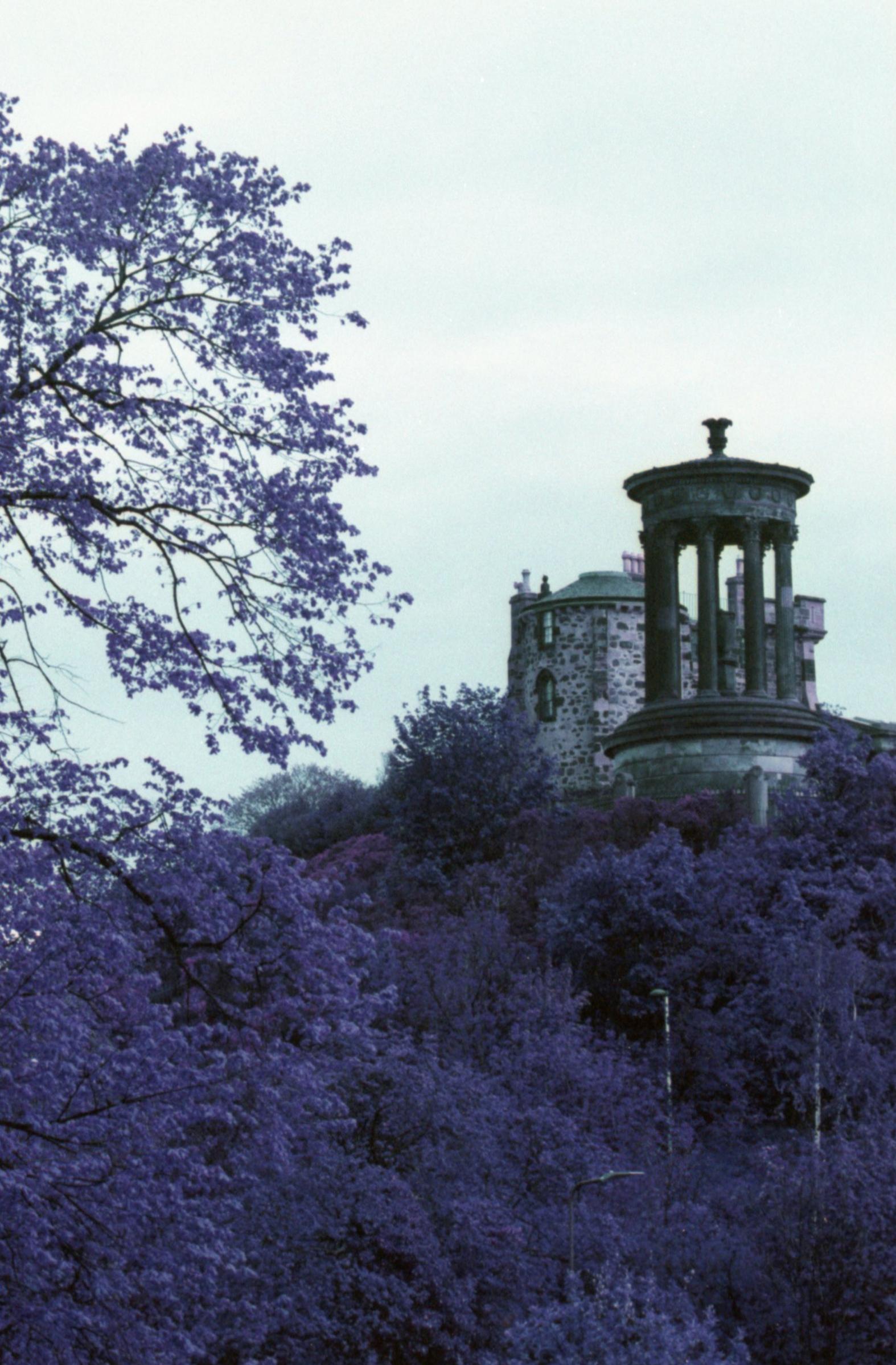 2015-Scotland-LomoChrome_011.jpg