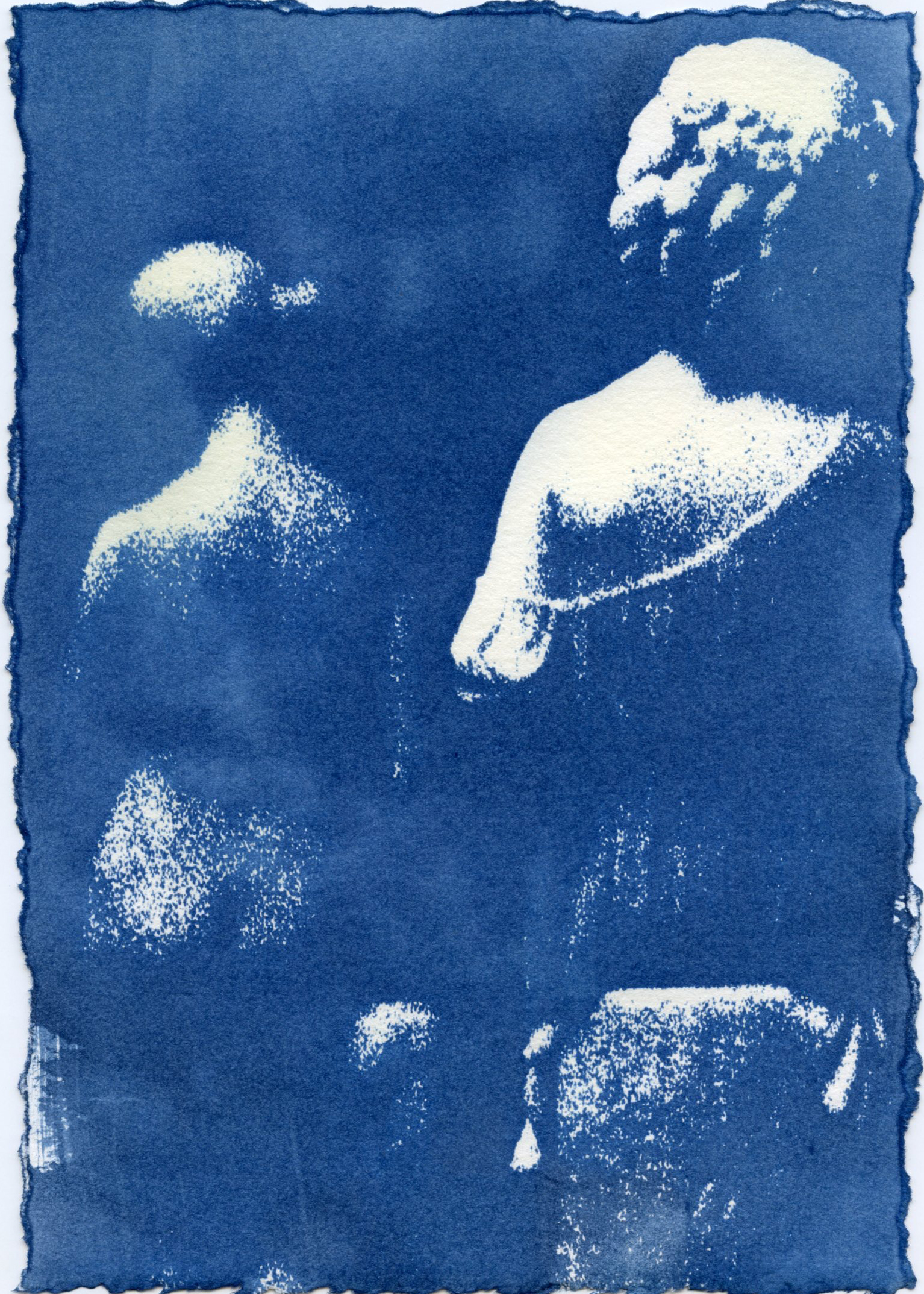 cyanotypes-005.jpg
