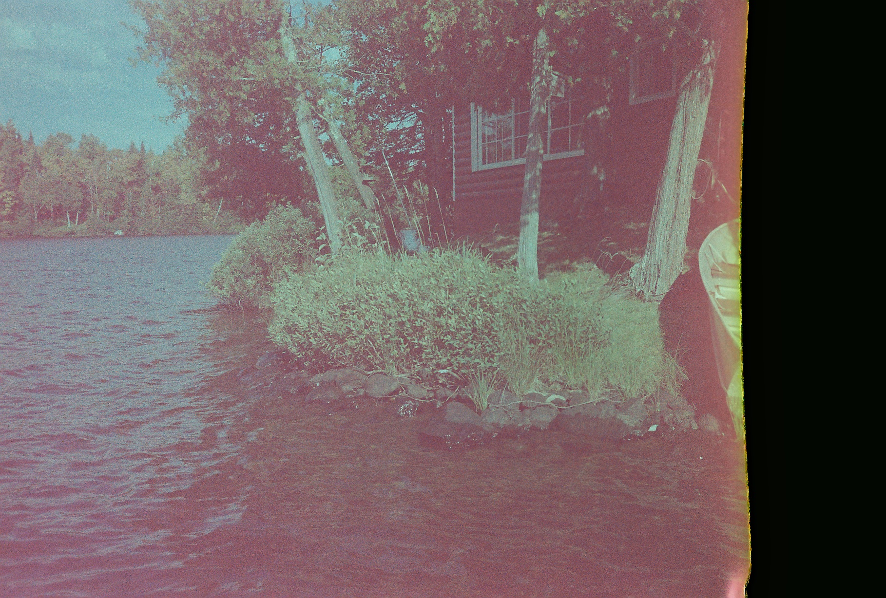 12. cabin in the woods (end of the roll).JPG