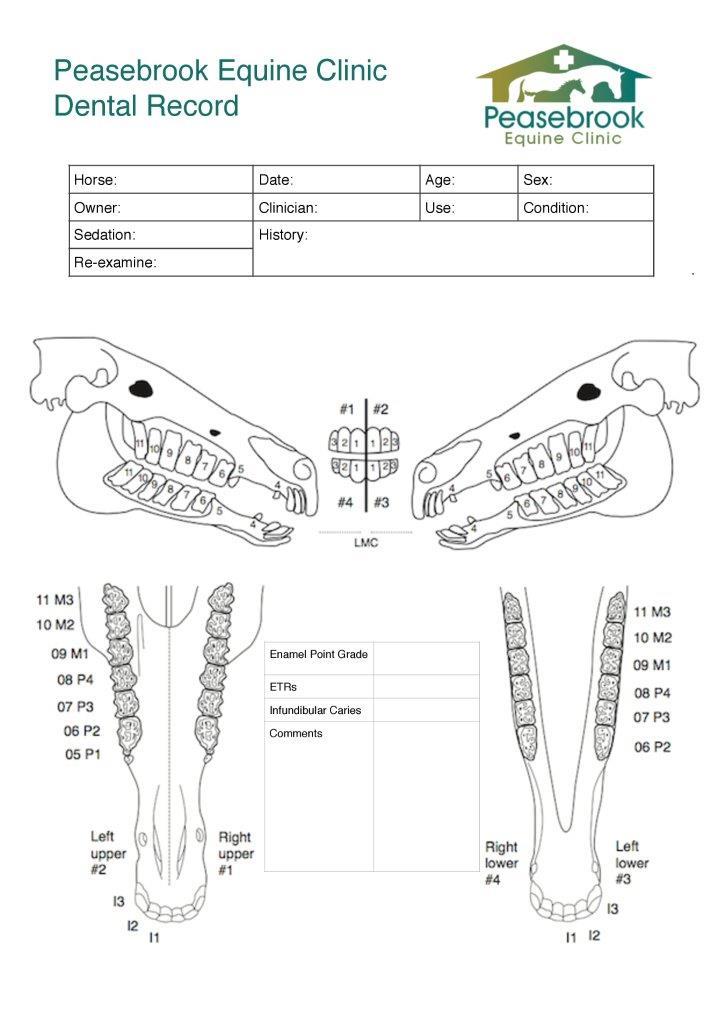 PEC dental record-page-001.jpg