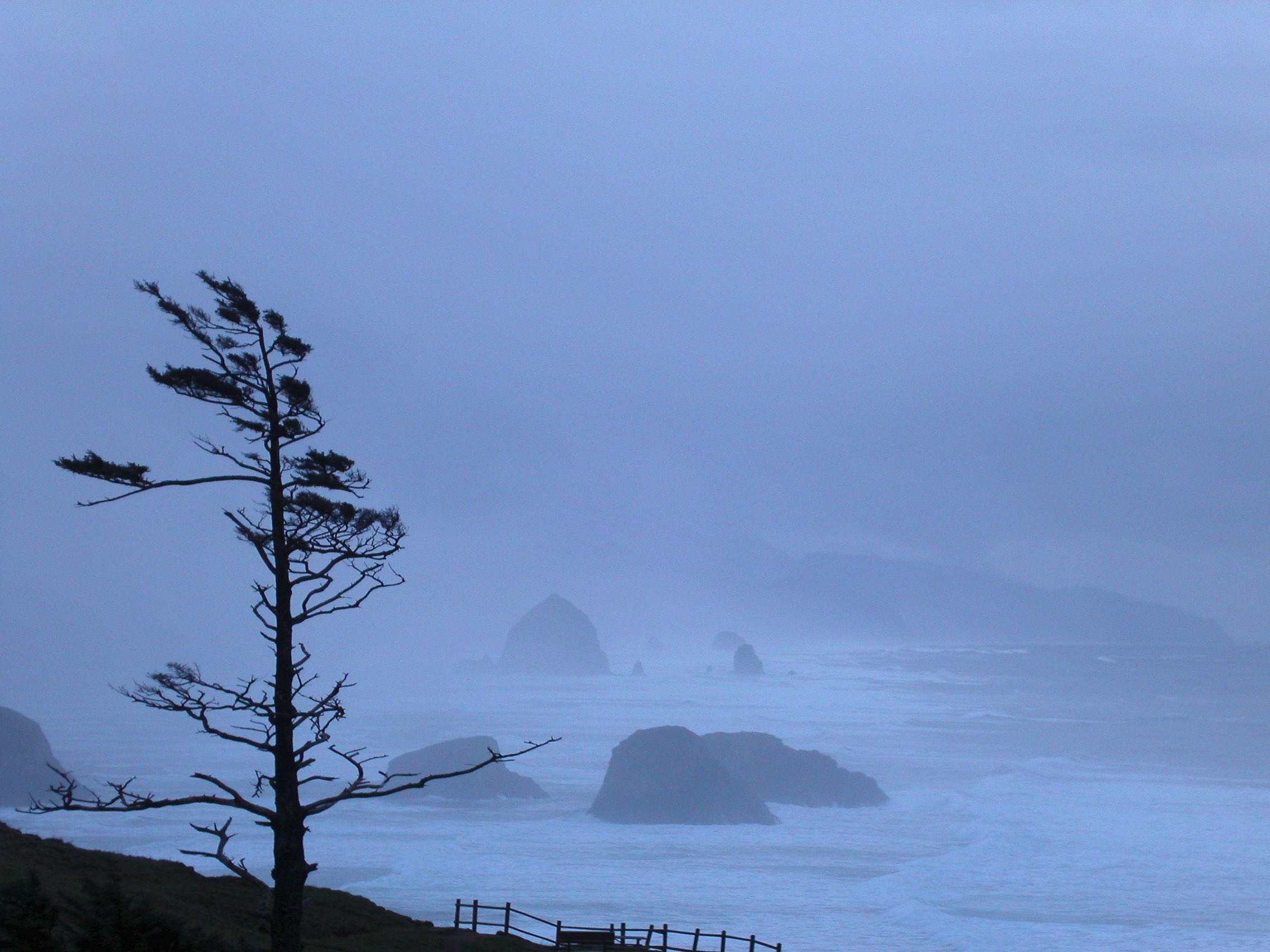 Oregon Coast Storm