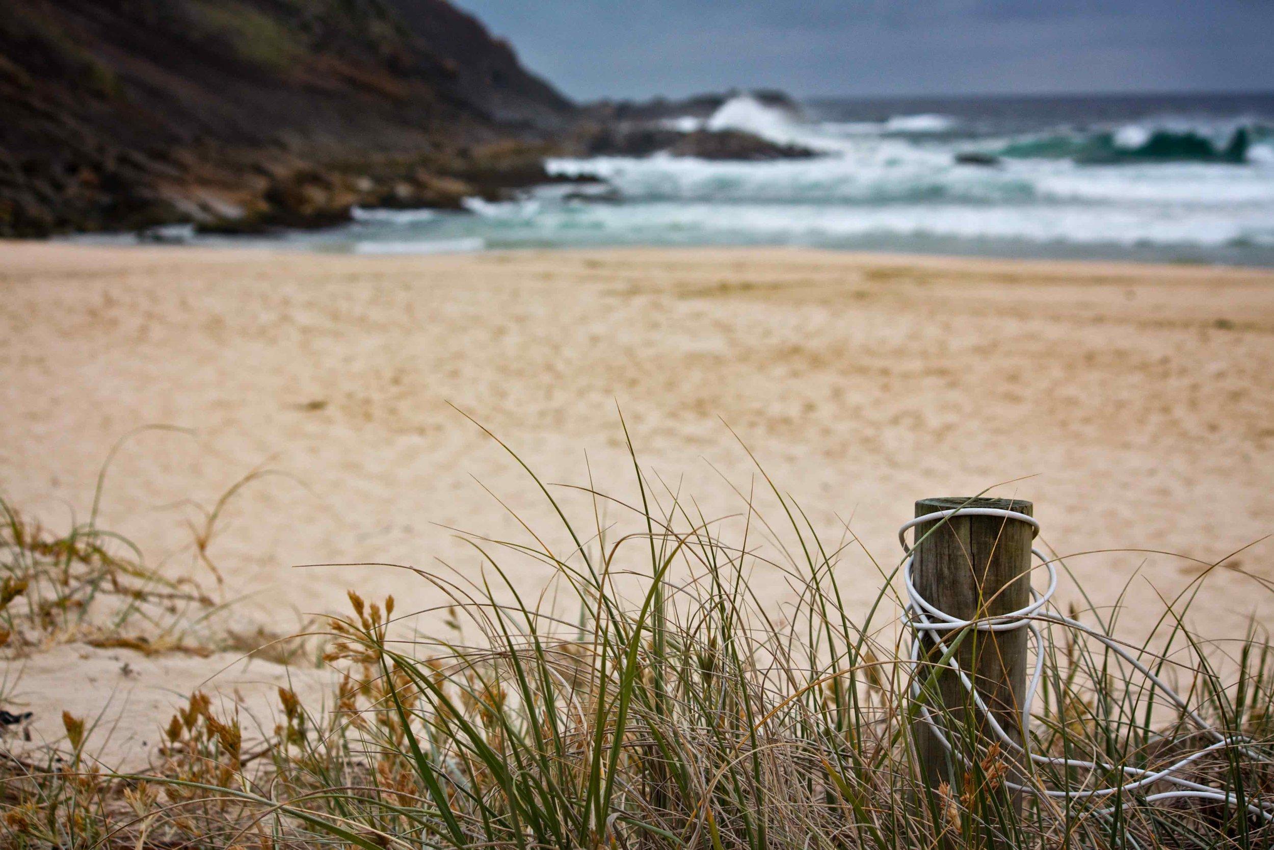 Australian Surf