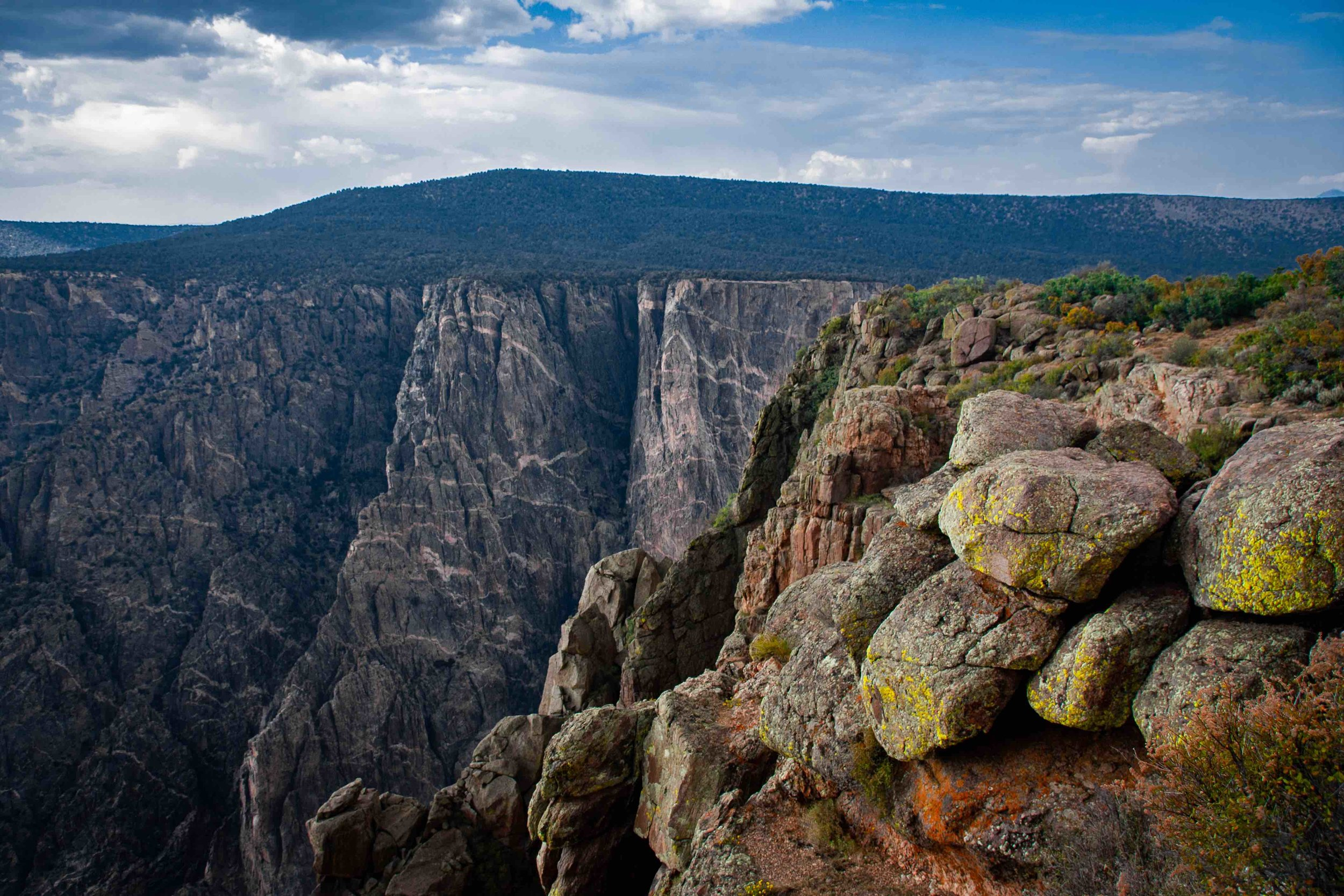 Gunnison Canyon