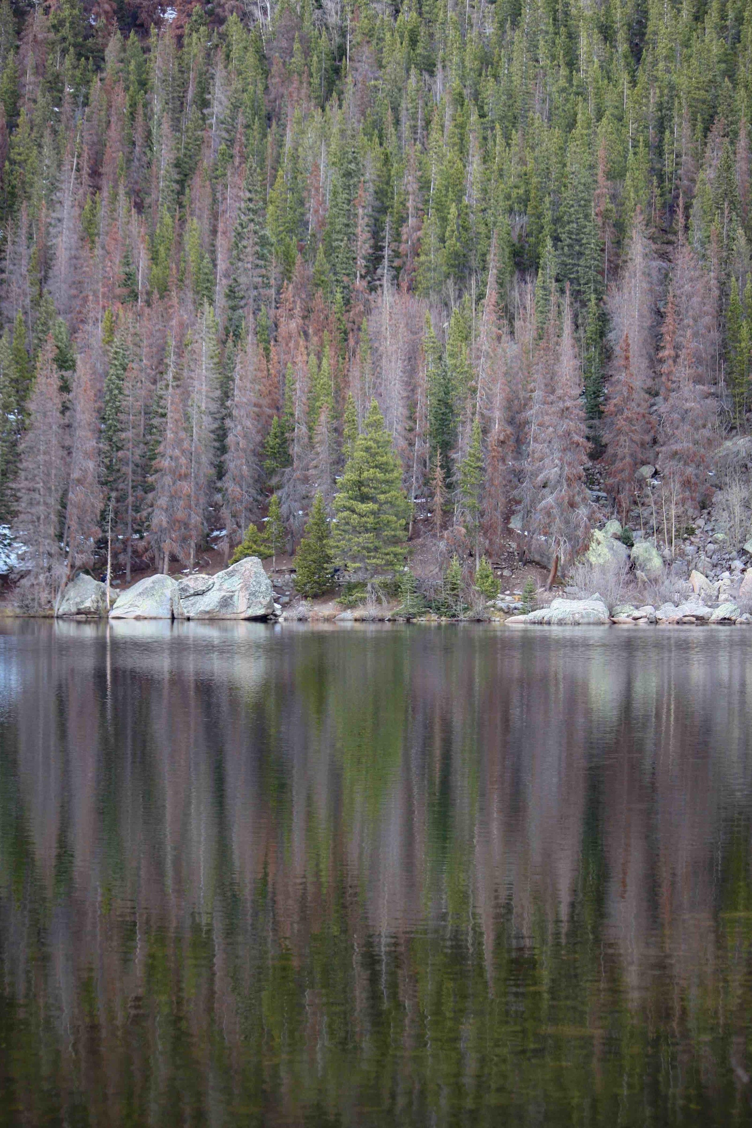 Colorado Lake Reflections