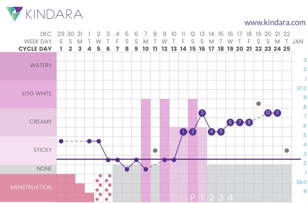 El método sintotérmico en acción - este es el gráfico de mi ciclo número 11 usando el método para evitar un embarazo y llevar un registro de mi salud menstrual con 100% de éxito