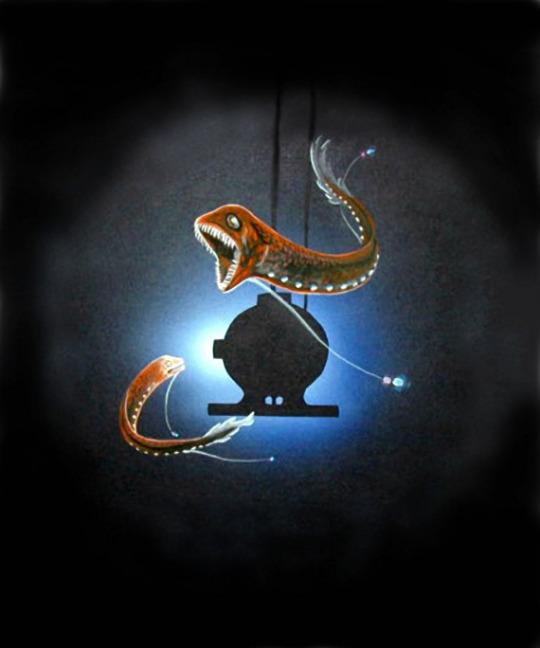 giant dragonfish.jpg