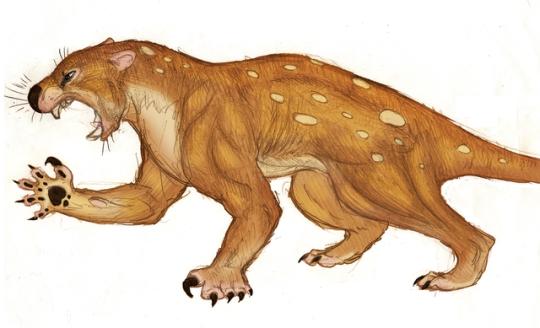 marsupial lion.png