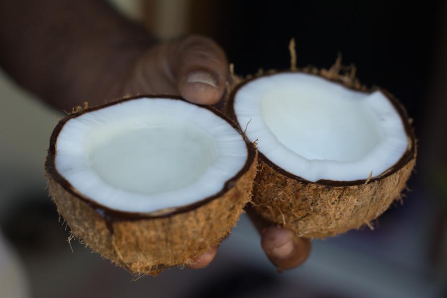 Kokosnød fra Thoddo