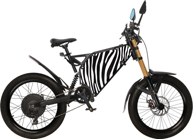 Devalst Zebra.jpg