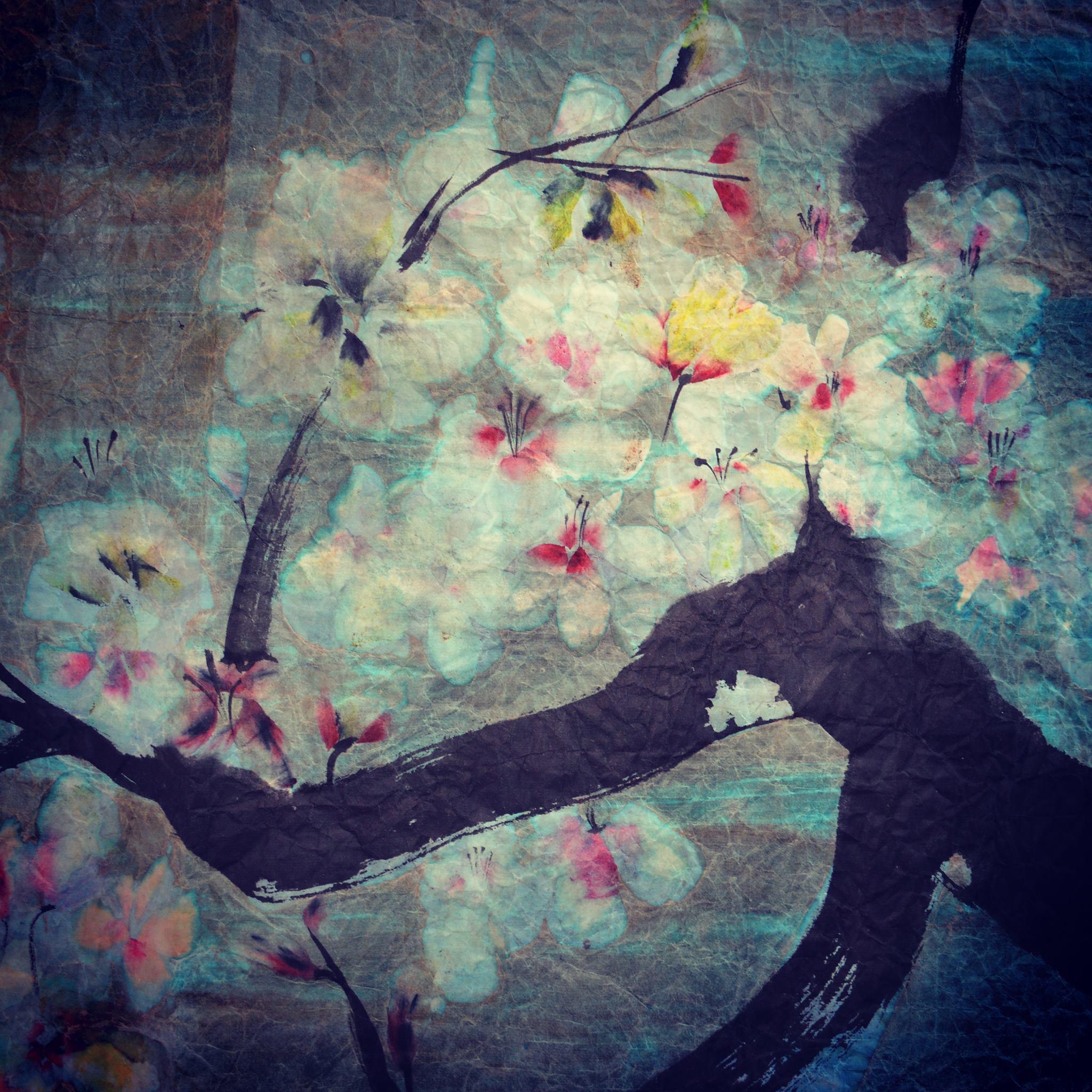 """Flores Blancas, de la serie """"Flores de Invierno""""."""