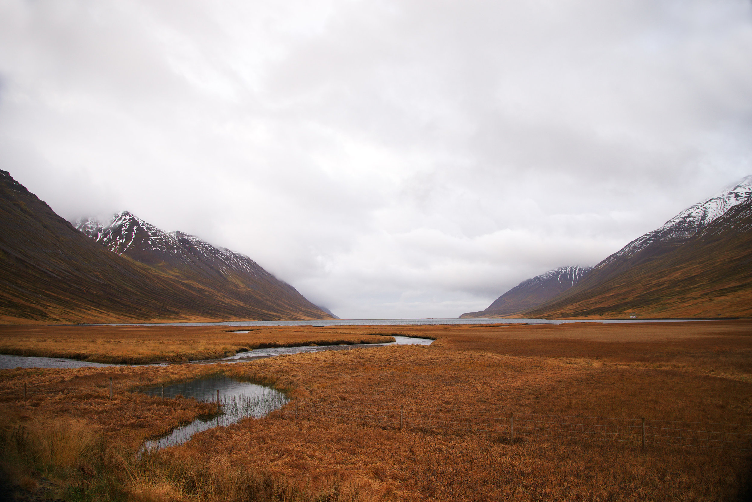 Iceland_Field&Mountains.jpg