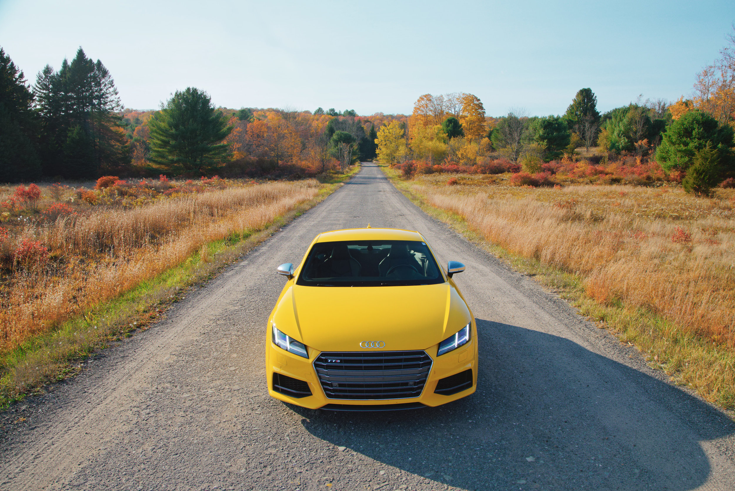 Audi_TTS_Front.jpg