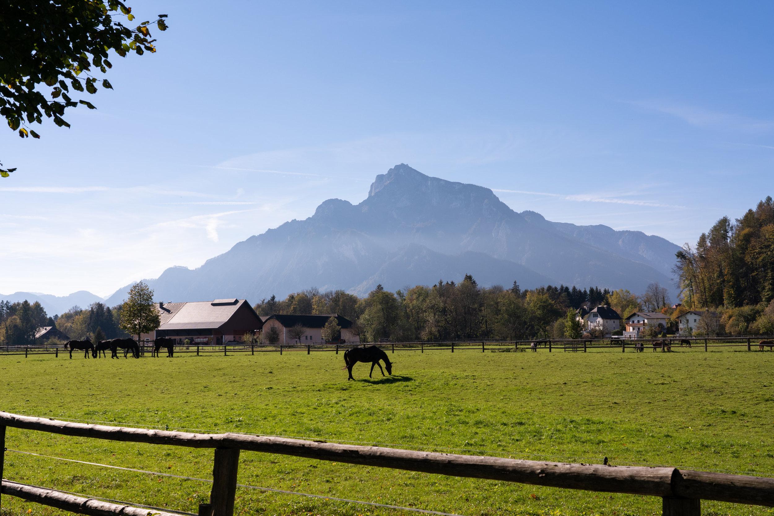 Austria_BeautifulSalzburg.jpg