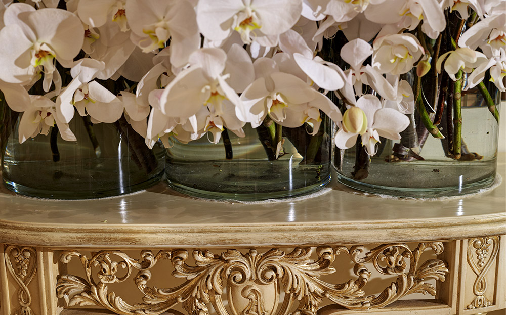 white_orchid_wall.jpg