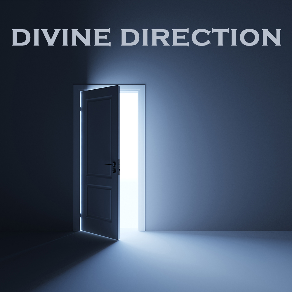 2018 Divine Direction.jpg