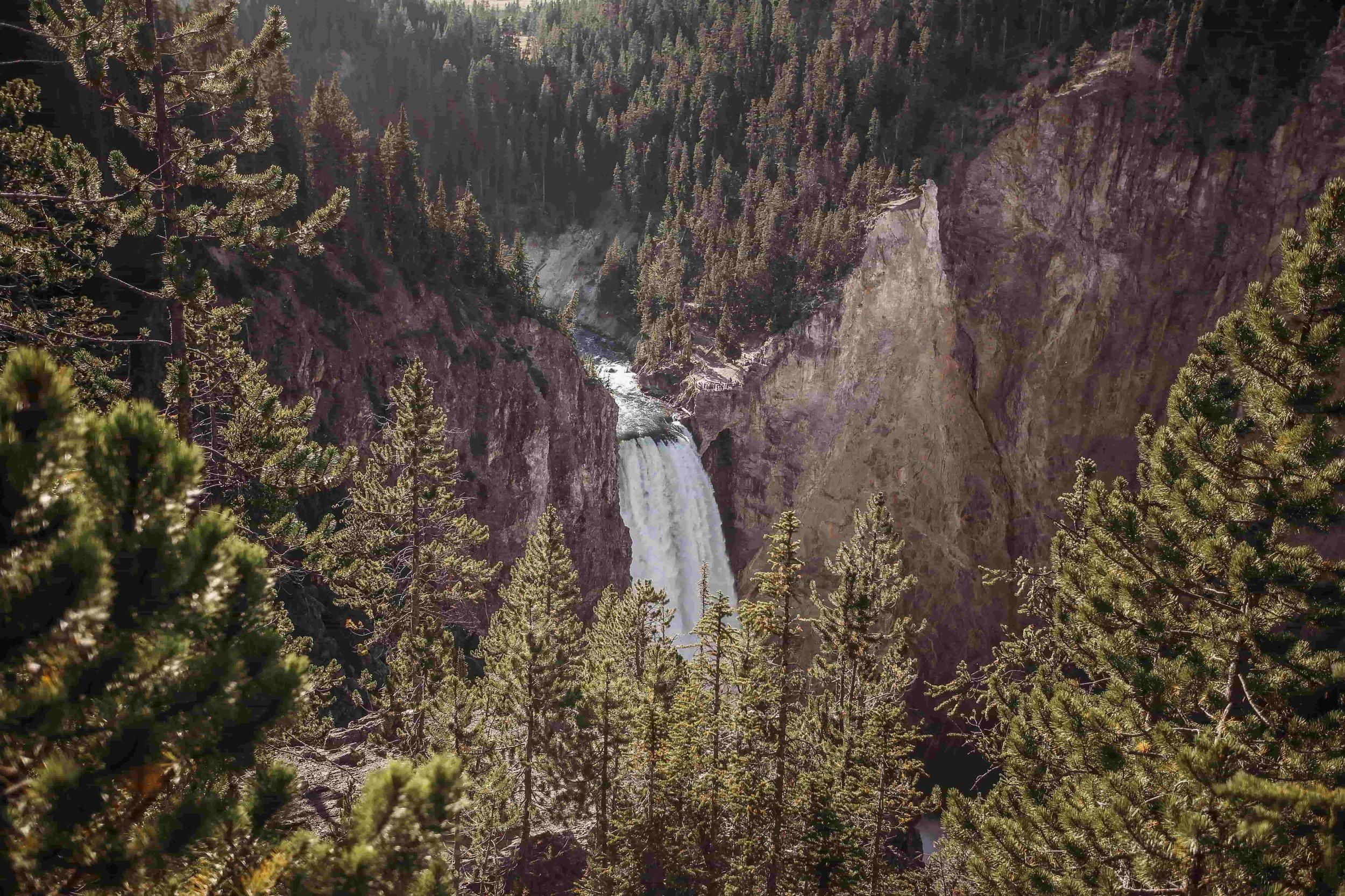 Grand Canyon of the Yellowstone1.jpeg