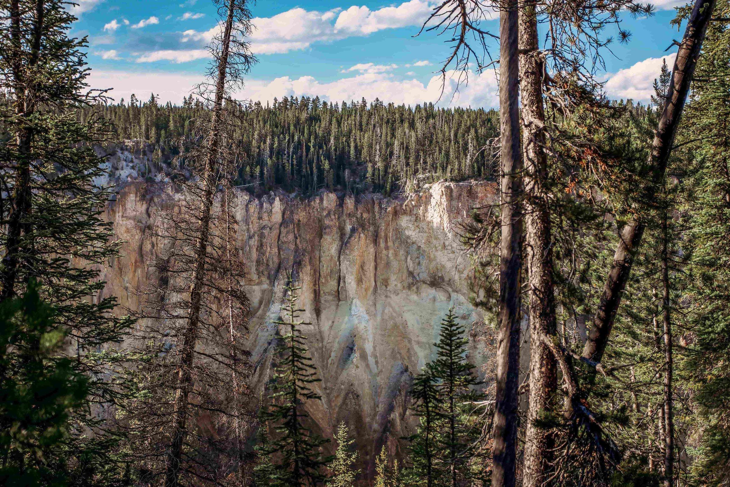 Grand Canyon of the Yellowstone2.jpeg