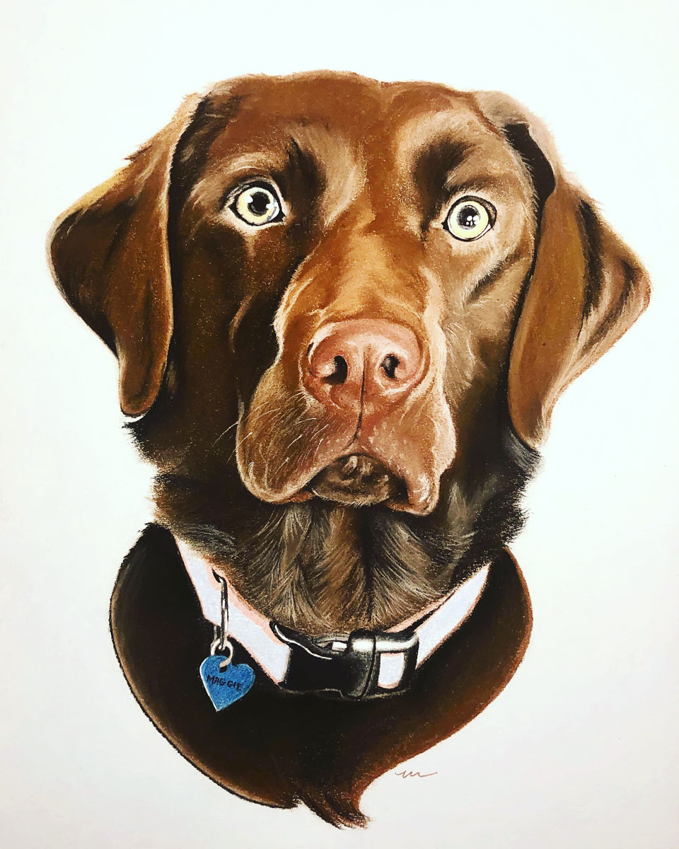 chocolate lab for web.jpg
