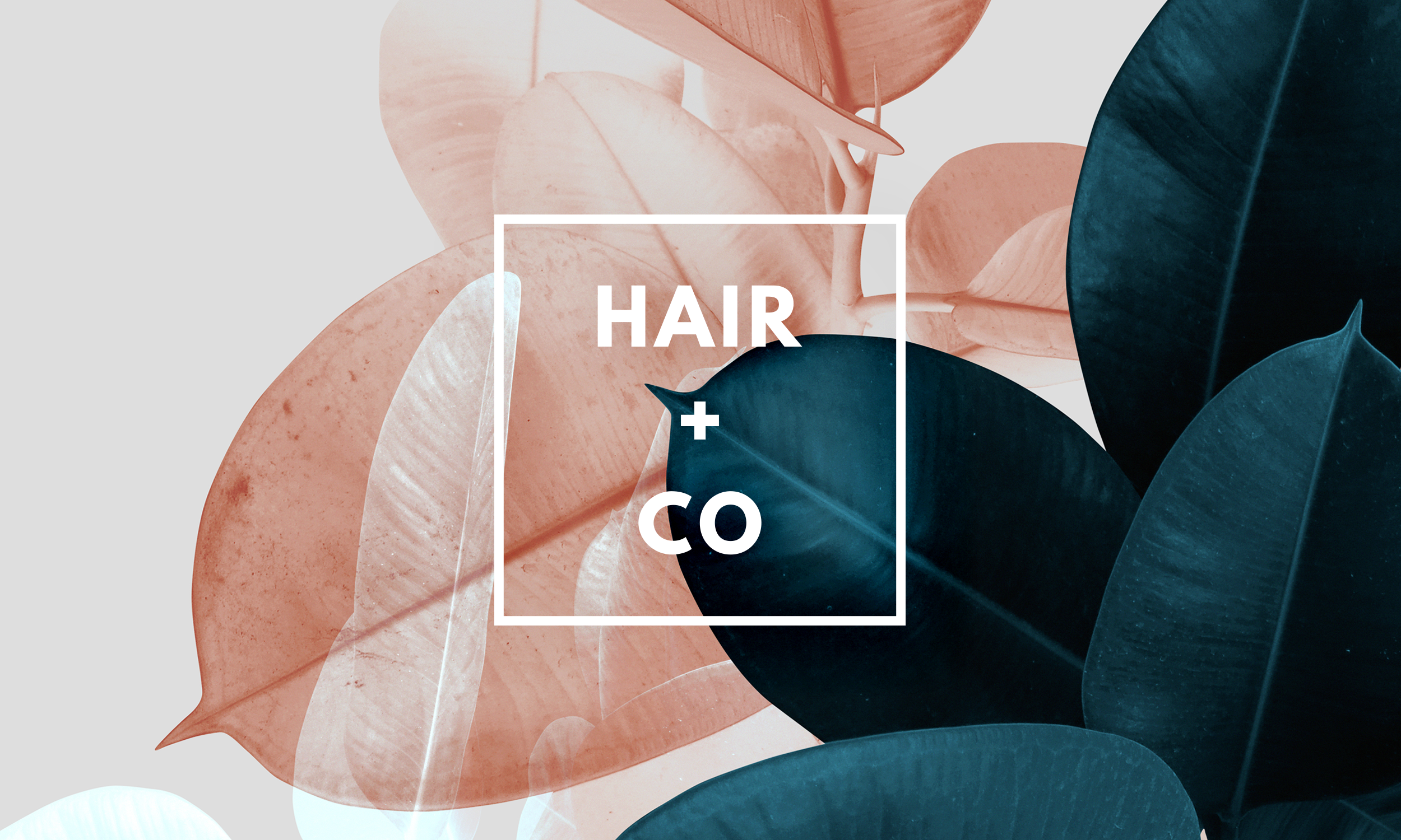 Hair-And-Co-Pensacola-FL-Home-1.png