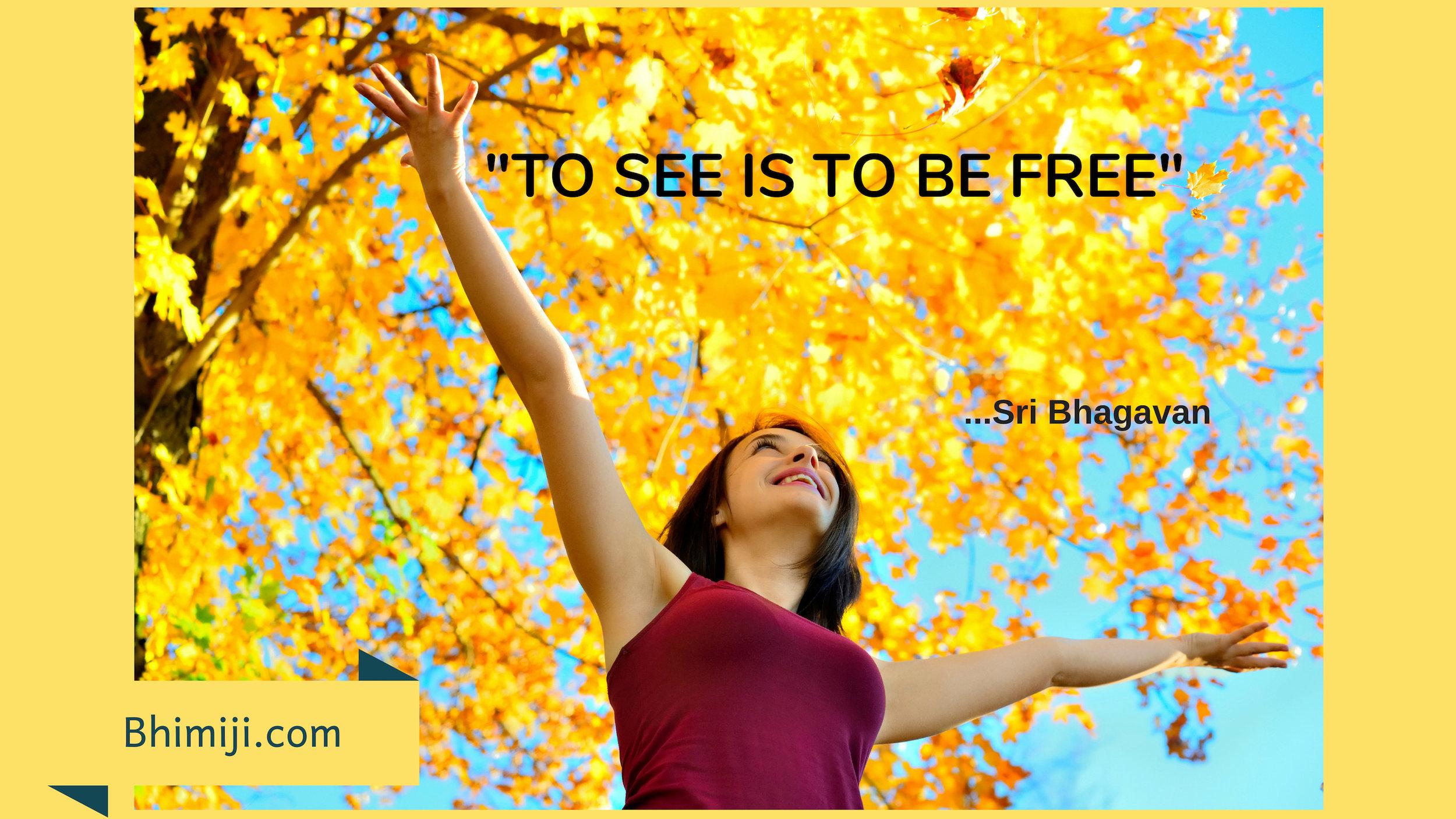 See be Free.jpg