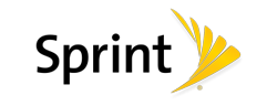 sprint-logo-website-consultant.png